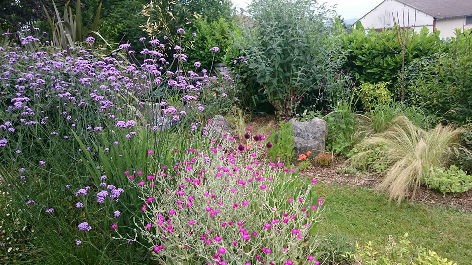 Juin jardin de luchane for Jardin 1m2