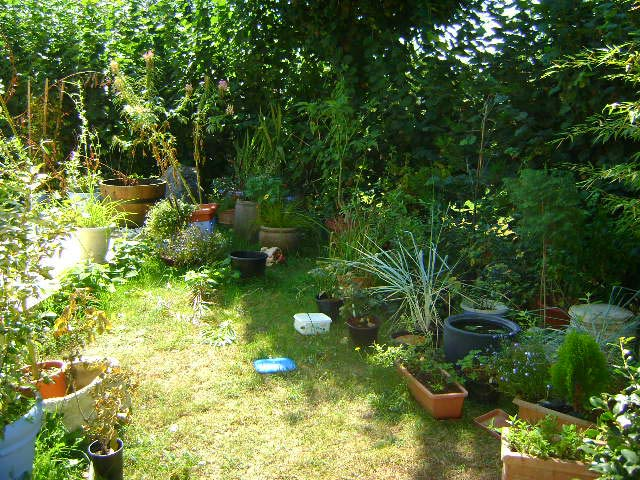 Création d\'un bassin zen. · Jardin de Luchane