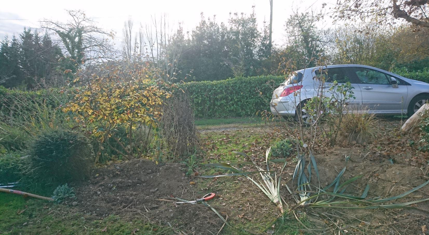 Division et nouvelle haie jardin de luchane for Entretien jardin quesnoy sur deule