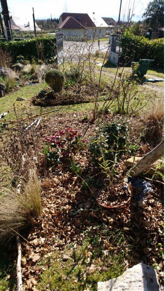 Le nettoyage continue jardin de luchane for Nettoyage de jardin